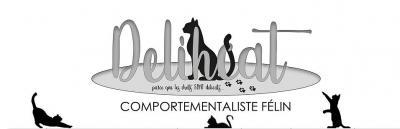 Delhicat